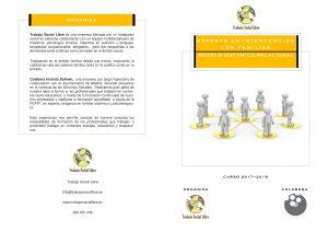 experto-pdf-1
